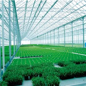临沂钢结构蔬菜大棚类型及成本