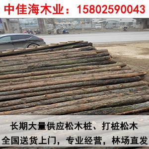 松木桩施工前,由测量人员依据设计图纸进行放样,确定每个木桩打设桩位