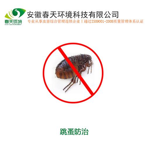 http://sem.g3img.com/site/34062848/image/c2_20170601115149_17001.jpg