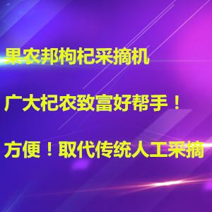 宁夏枸杞采摘器品牌果农邦建议枸杞直接嚼吃营养佳