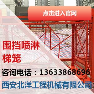 汉中高墩施工梯笼,安全防护网梯笼销售厂家期待亲来电咨询