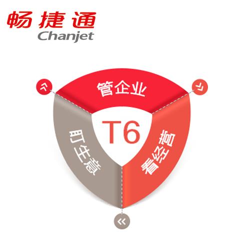 暢捷通 T6