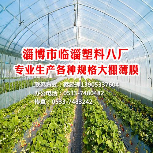 内蒙古大棚膜批发销售,产品无毒环保,透光性强