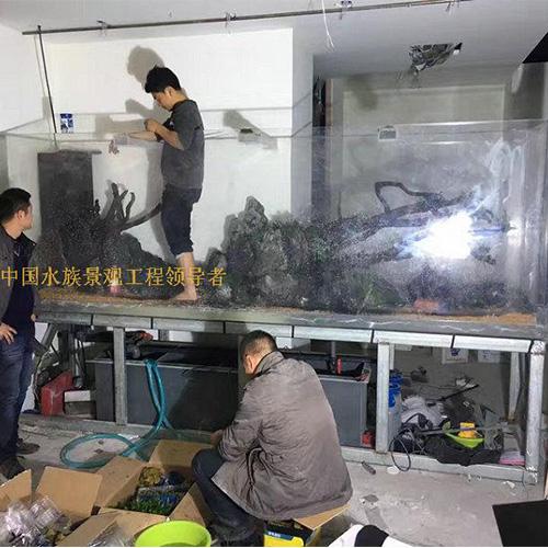 深圳宝安大型鱼缸工程制作哪家售后服务好?他拍档信赖的企业期