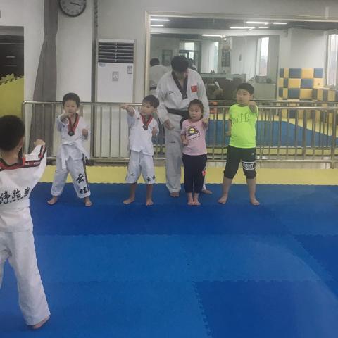 交通路专业青少年跆拳道培训机构
