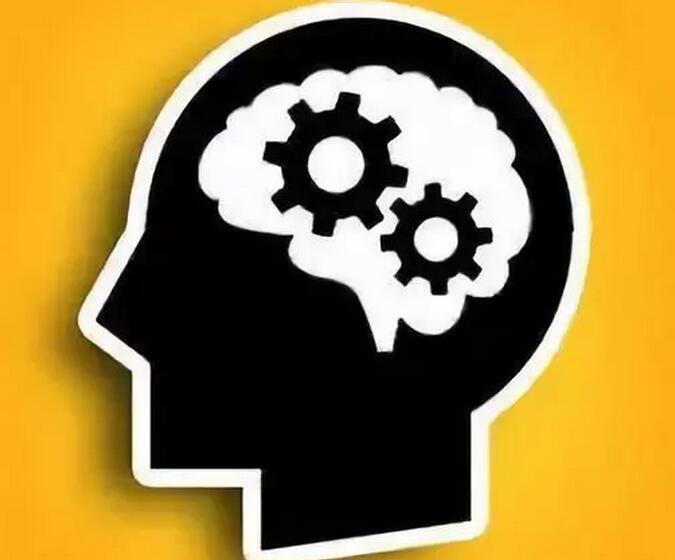杭州快速阅读记忆加盟项目,完善的理论体系结构