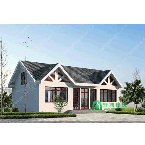 13x8米一层带阁楼农村房子设计图