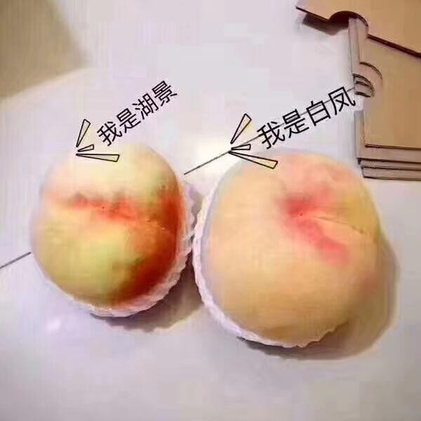 �o�a�a山�^正宗�山水蜜桃品�N介�B