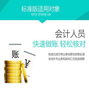 佛山金蝶软件-蝶昇-价格实惠-加倍精心