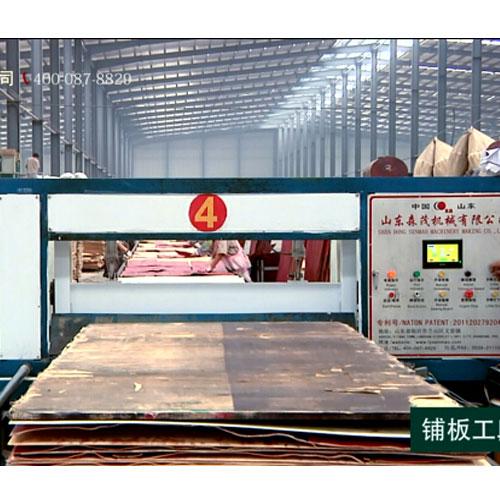 漳州市木工機械自動進出板設備哪家好_森茂機械