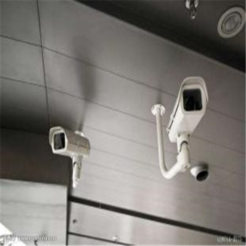 南山哪里有提供服务应用监控的公司